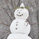 A nins? 25 de tipuri de zăpadă cu care te-ai putea confrunta iarna asta