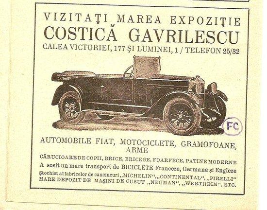 expozitia-costica-gavrilescu1
